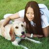 Malou: Dog sitter et compagnon de jeux à Toulouse !