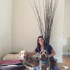 Virginia: Dog sitter in Chessington
