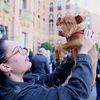 Ainhoa: Diversión, Bienestar y Descanso Canino 💛🐾