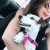 Myriam : Doggsitter Passionnée