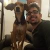Sergio: El mejor hogar para tu mascota! Divertido, activo y emocionante! PREGUNTAR AUNQUE APAREZCA COMPLETO!