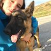 Sara: Largos paseos y excursiones con tu perro