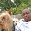 Henzy : Henrich Doggy-Staycation Pet Services