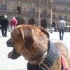 Jorge: Cuidador en Salamanca
