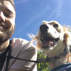 Andy: Andys Canine Care