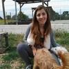 Lucia: El perro feliz