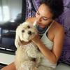 Ambrine: Ambrine Dog Sitter Montpellier : Parce que ce sont eux les maîtres, et nous les apprentis.