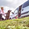 Katharina: Liebevolle Hundebetreuung in Stelle