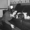 Laura: One-to-one dog walking and care - your dog only!
