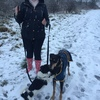 Sarah: Dog walker Newcastle/Gateshead