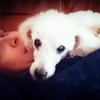 Katerina: Dog Walker in Brighton & Hove