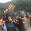 Carmen: Paseo perros junto a mi labrador Cocoa