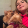 deniz: LONDON PAWS PETSITTING LIMITED