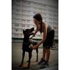 Alexia: Cuidadora de mascotas con experiencia en Gijón