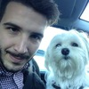 Daniele: Dog sitter petit chien