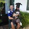 Aritz: Paseador de perros en Hernani