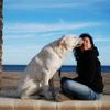 Maria Jesus: Tu perro como en casa!