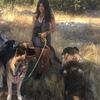 Sara: Cuidado y paseo de perretes 🐕♥️