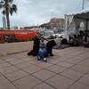 Teresa: Cuidadora y paseadora de perros en Valencia