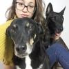 Noelia: Perros del Norte de Tenerife ¡a pasear!