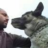 Rodolfo: Caminador-domador de perros