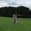 Henar: Dogwalking_ Paseo, ejercito y entreno a perros