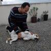 Pere: Cuidador de perros en torredembarra