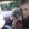 Luna: Take care of dogs
