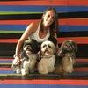 Katherin: 🐕🐕Kathyzoo el hogar de tu mascota 🐕