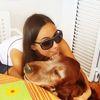 Alejandra: Cuidadora de perro en Las Rozas y Molino de la hoz