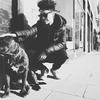 Mey: Cariño y diversión para todos los perretes