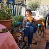 Valentina: Diversión a 4 patas