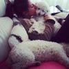 Tania: Una casa sin mascota no es un hogar :)
