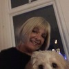 Lynda: Dog/House sitter or dog boarding Harrogate area.