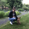 Julia: Julias Hundebetreuung