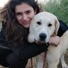 Carlota: Cuidadora de perros en Santander y San Sebastián