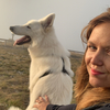Morgane: Week-end nature avec mes chiens ⛰🌿