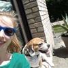 Ameline: Dog sitter