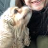 Mallorie: Pet-sitter Estaires/Armentières/Merville...