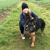 Alice: Dog walkers in Norfolk area