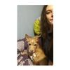 Clara: Dog sister in Bromley