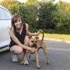 Michelle : Zuverlässige Hundebetreuung in Leipzig