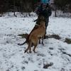 Corina: Hundesitterin auch für schwierige Fälle!