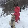 Mélusine: Bienvenue chez Mélusine, la meilleure des dogsitter