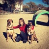 Lorena : Hogar es donde está mi perro