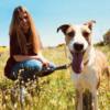 Clara: Mucho amor para tu perro en la Sierra de Madrid