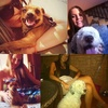 Lourdes: Cuidadora responsable y amante de los perros. sevilla