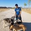 Jonathan : El mejor amigo del perro!