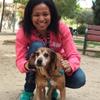 Lucía: Cuidadora de perros, tu perrete en las mejores manos hasta que vuelvas ;)