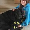 Angela: Cuidadora de perros en Pedrezuela